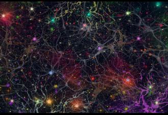 רשתות מורפוגנטיות
